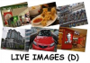 Flashcards - Live Images D (250 pcs)